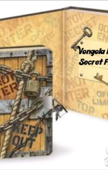 Vongola Family Secret Files