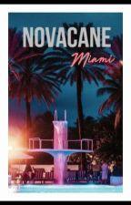 Novacane Chapter II - Miami [ Russian Translation]  by JanelIsLivingfor1D