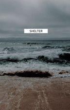 shelter. by -ttaek
