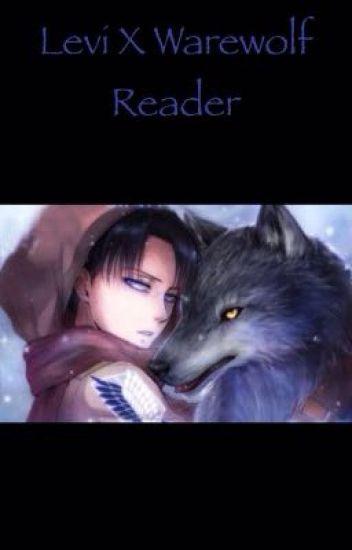 Levi X Werewolf reader.