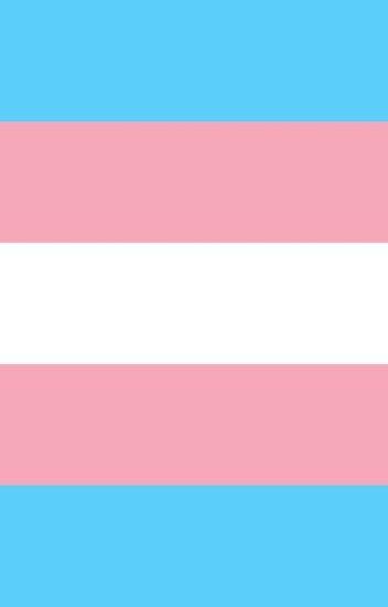 my life + being transgender.