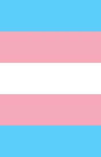 my life + being transgender