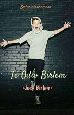 Te Odio Birlem →Joey Birlem← by luciaisaromero