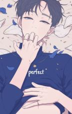 perfect ⇝ verkwan by jiminamed