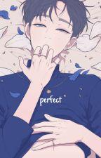 perfect ⇝ verkwan by jiminamed