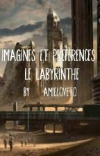 Imagines Et Preferences : Le Labyrinthe by _-YaN-_