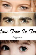 Love Torn In Two ( Sequel to Those Damn Salvatores- Vampire Diaries) by Sugarsun