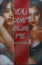 you don't own me / camren  by intheweeknd