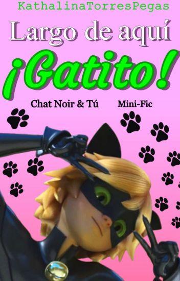 ¡Largo de aquí, Gatito! [ChatNoir&Tú] [Mini-Fic]