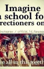 A School For Only Directioners [Under Extreme Editing] by Nicole532