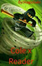 Cole x Reader [Zawieszone] by MagicGabi