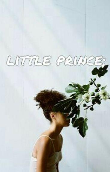 little prince .joshler.