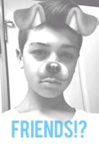 Friends!? ( a Joey birlem fanfic) by cutieherron