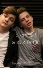 promise? // a zick fanfic by haydenxlang