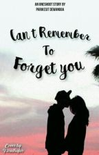 Can't Remember To Forget You by Parikesit_Dewangga