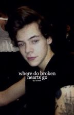 where do broken hearts go | narry by hobists