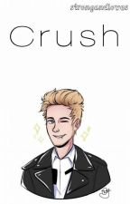 Crush||L.H by _krkj_