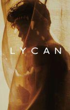 Lycan [ ON HOLD] by Midnight_Indigo