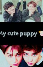 My Cute Puppy (جروي اللطيف ) by kpop__yaoi