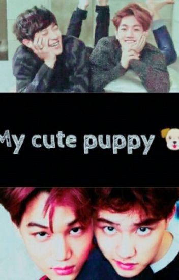 My Cute Puppy (جروي اللطيف )