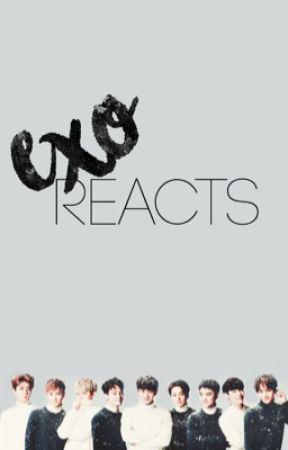 exo reacts by kpopya