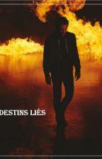 Destins Liés [EN PAUSE] by Alesiadel