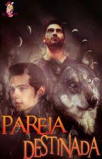 Pareja Destinada(Sterek) by BloodMoon99