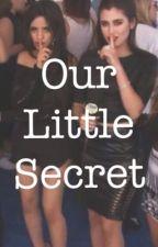 Our Little Secret (Camren) by justmeee99