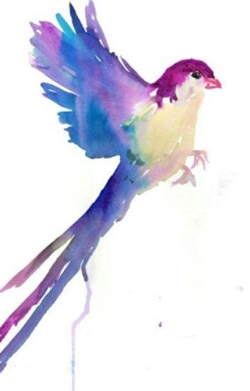 Blue Bird & The Crow