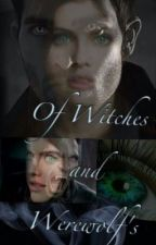 Of Witches And Werewolfs (Teen Wolf FF/Derek Hale) by SomethingAndAnything