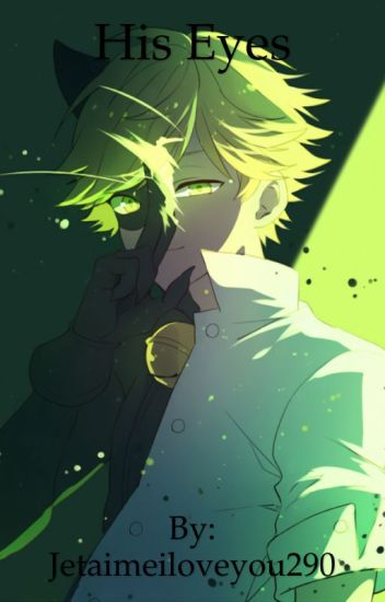 His Eyes (Chat Noir x Reader)