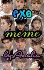 EXO MEME by Amalia_exo-l