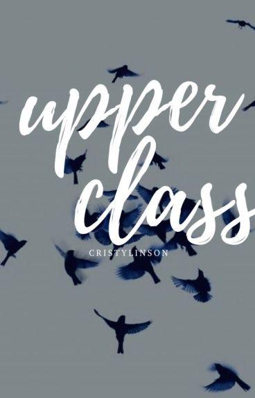Upper Class (Larry Stylinson - Omegaverse)