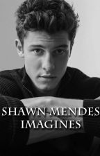 Shawn Mendes Imagines by dorrkaaa