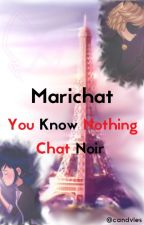 [Marichat]You know nothing Chat Noir by Morgoseee