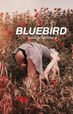 bluebird :: hes by holographarry