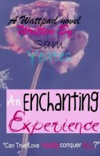 An Enchanting Experience [Discontinued Until Further Notice] by SparklyPirateHooker