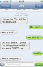 Sonic funny text messages XD by AlexiaRyder