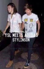 YSL meets Adidas | l.s [Traducción al Español] [Actualizaciones lentas] by InLarryLove