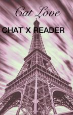 Cat love Chat Noir x reader by ZIPPY_CHAN