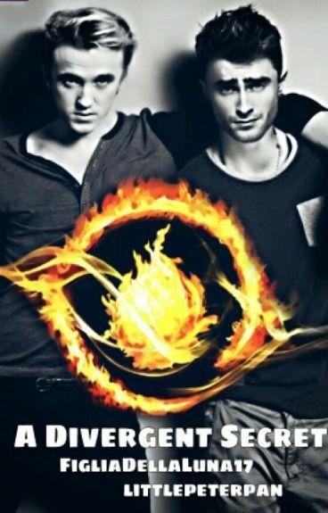 DRARRY - A Divergent Secret.