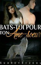 Bats toi pour ton âme-soeur by AudreyBizeul