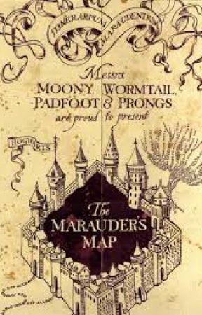 The Marauders Map Versus... - McGonagall Versus the Map - Wattpad