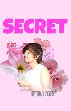 Secret /Louis Tomlinson au./ by petrabusch15