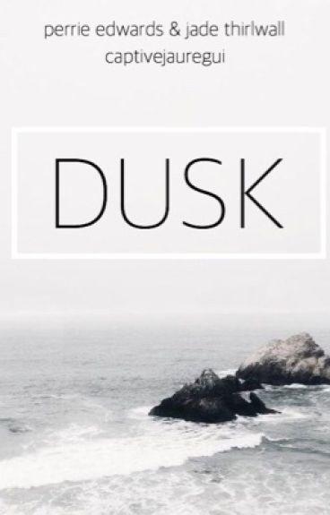 Dusk ▷ Jerrie: Slow Updates