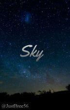 Sky by lxrrystylinsxn289