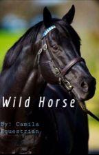 Wild Horse by CamilaPurdyy