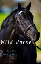 Wild Horse by CamilaEquestrian