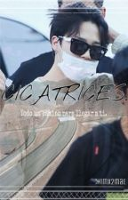 Cicatrices. -Park Jimin.  by chimx2mad