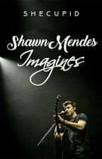 Shawn Mendes Imagines by shecupid